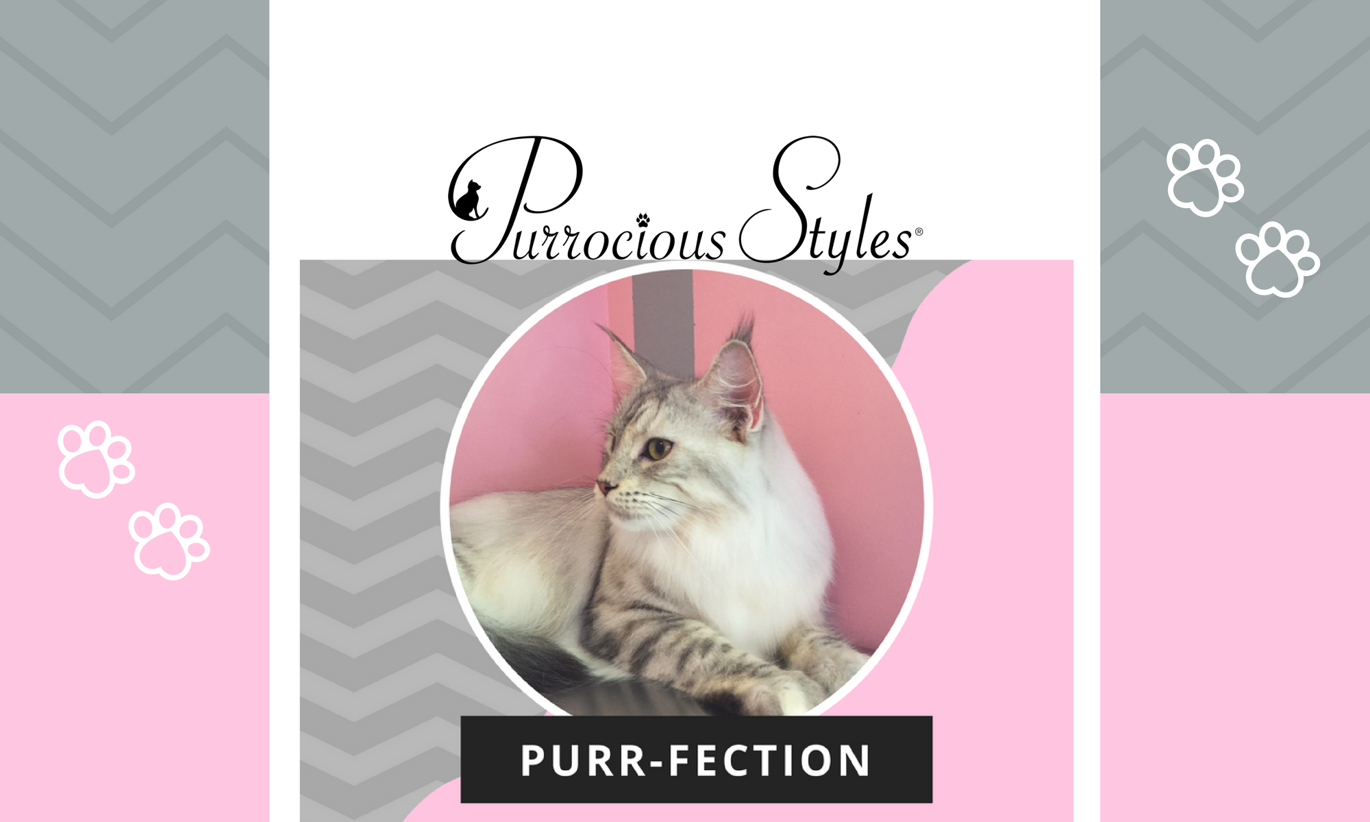 Purrocious Styles Feline Designs