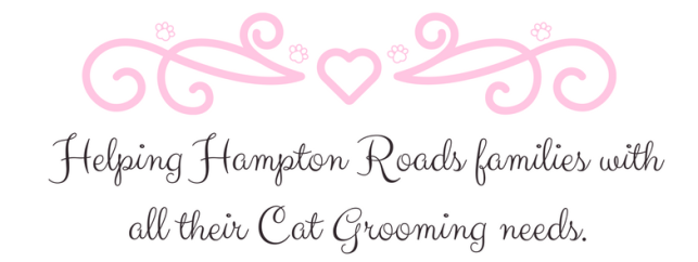 Helping Hampton Roads families with all their Cat Grooming needs.